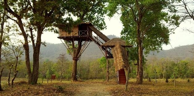 Beauty of Tree House