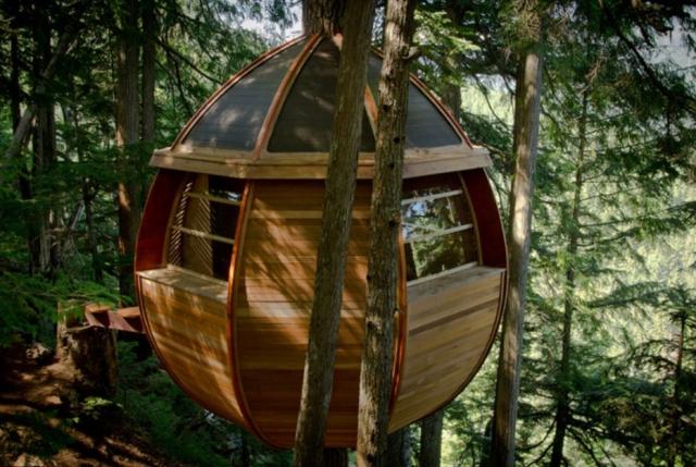 Egg Shaped Tree House