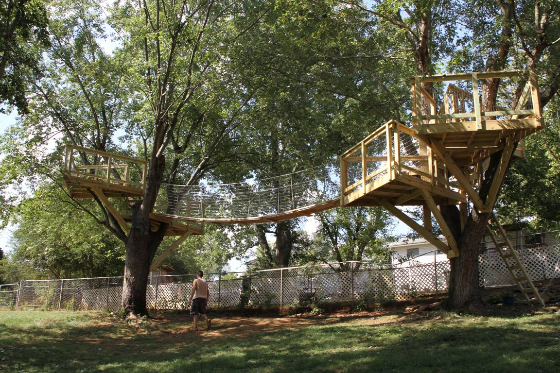 Tree House Plans For Two Trees