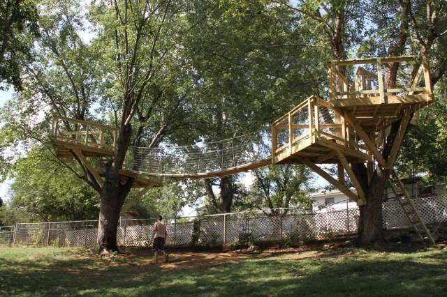 Open platform as tree house