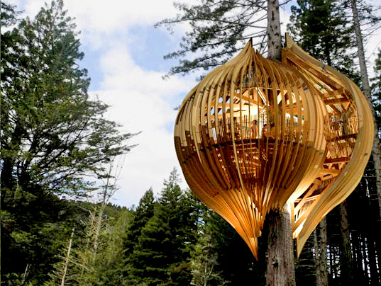 Whimsical Yellow Treehouse - New Zealand