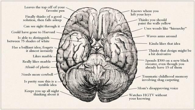 Brain of designer-4